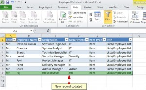 Figure 15 - Item Updated in the Connected Excel Workbook