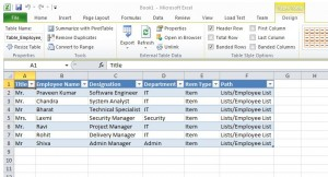 Figure 7 - Excel Web Query File, Shows SharePoint List Data